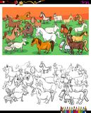 Horses and goats characters group color book Stock Image