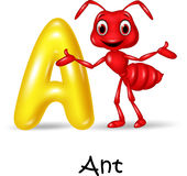 Cartoon illustration A of letter for Ant. Illustration A of letter for Ant on white background Stock Photo