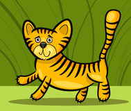 Cartoon illustration of little tiger Royalty Free Stock Photos