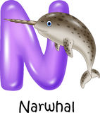 Cartoon illustration of N Letter for Narwhal Stock Photos