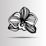 Cartoon illustration of orchid vector icon for. Hand drawn set w Stock Images