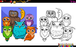 Owls bird characters group coloring book Stock Photography