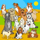 Pedigree dogs cartoon characters group. Cartoon Illustration of Pedigree Dogs Animal Characters Group Royalty Free Stock Images