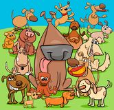 Playful dogs cartoon characters group. Cartoon Illustration of Playful Dogs and Puppies Animal Characters Group Royalty Free Stock Image