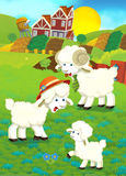 Cartoon illustration with sheep family on the farm Royalty Free Stock Images