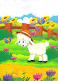 Cartoon illustration with sheep on the farm - illu Royalty Free Stock Photos