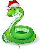 Cartoon illustration of a snakes Royalty Free Stock Image