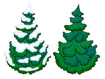 The cartoon illustration of a spruce tree Stock Photos