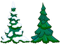 The cartoon illustration of a spruce tree Stock Photo