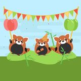 Cartoon illustration of three cute red pandas with balloons and falgs on green grass. Stock Photos