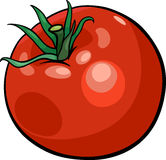 Tomato vegetable cartoon illustration Stock Images