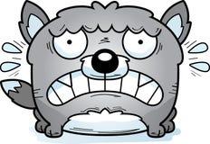 Terrified Little Wolf Stock Image