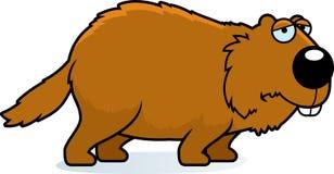 Sad Cartoon Woodchuck. A cartoon illustration of a woodchuck looking sad Royalty Free Stock Photo