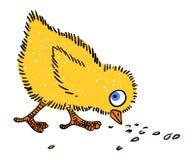 Cartoon image of chicken Stock Photos