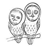 Cartoon image of cute owls Stock Photo