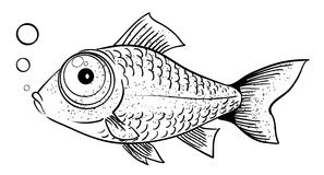 Cartoon image of fish Royalty Free Stock Photography