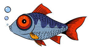 Cartoon image of fish. An artistic freehand picture Royalty Free Stock Photos