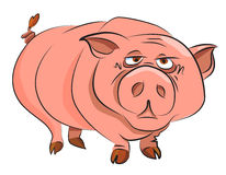 Cartoon image of huge pig Royalty Free Stock Photos