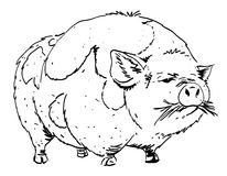 Cartoon image of huge pig Royalty Free Stock Images