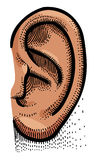 Cartoon image of human ear Stock Photo