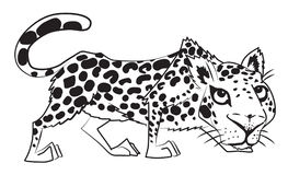 Cartoon image of leopard Royalty Free Stock Image