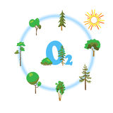 Cartoon image of photosynthesis trees Stock Images