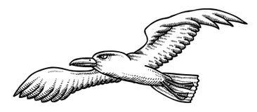 Cartoon image of seagull Stock Image