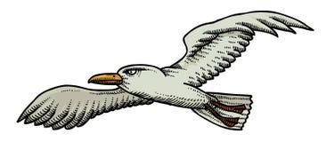 Cartoon image of seagull Royalty Free Stock Photo