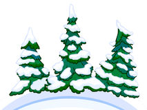Cartoon image of three conifers on white-blue snowdrifts. Royalty Free Stock Photos