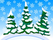 Cartoon image of three snowy conifers with snowflakes Royalty Free Stock Image