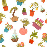 Cartoon indoor plants seamless pattern for interior design, wrapping. Royalty Free Stock Images