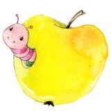 Cartoon insect apple worm watercolor illustration. Royalty Free Stock Photography