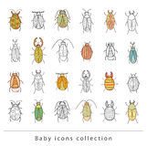 Cartoon insect bug icon, vector illustration Stock Photography