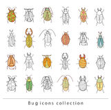cartoon insect bug icon, vector illustration. Stock Photography