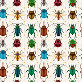 Cartoon insect bug seamless pattern. Vector,illustration Stock Images