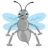 Cartoon insect fly. On white background is insulated stock illustration