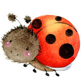 Cartoon insect ladybug watercolor illustration.