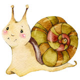 Cartoon insect snail watercolor illustration. Royalty Free Stock Images