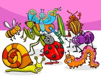 Cartoon insects and bugs characters group stock illustration