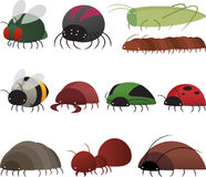 Cartoon insects Stock Image
