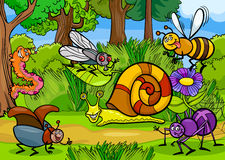 Cartoon insects on nature rural scene stock illustration