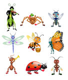 Cartoon insects. Vector insects on a white background Stock Photos