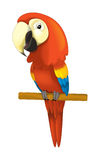 Cartoon isolated animal - parrot sitting looking and resting Royalty Free Stock Image