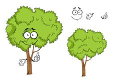 Cartoon isolated green tree character. Cartoon green ree character with forked trunk and sappy green foliage, isolated on white, for ecology or landscape design Stock Image