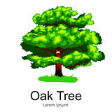 Cartoon isolated oak summer tree on a white background icon, outdoor park with branch, leafs on green grass vector Stock Images
