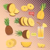 Cartoon isolated set of cute pineapples. Collection sliced  pineapple. Cartoon isolated set of cute pineapples. Collection sliced  pineapple on grid Royalty Free Stock Image