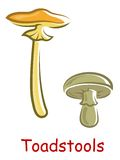 Cartoon isolated toadstools Stock Image