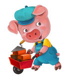 Cartoon isolated young pig in work outfit - interested - working - isolated Royalty Free Stock Photography