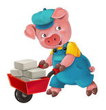 Cartoon isolated young pig in work outfit - interested - working - isolated Royalty Free Stock Image