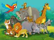 Cartoon junge - illustration for the children Royalty Free Stock Photo